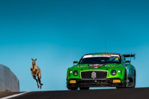 B12hr - Kangaroo and Bentley Racing Continental GT3 #8 | © Bentley